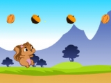 Happy Squirrel Fun Run