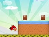 Angry Birds Disaster
