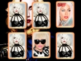 Lady Gaga Memory Cards
